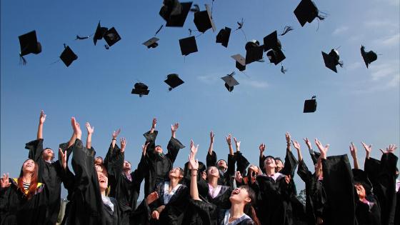 Oportunidade imperdível – Bolsa de Estudos da Universidade de Waikato!